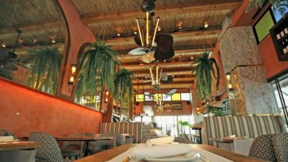 Restaurante Flores de Alcachofa Madrid