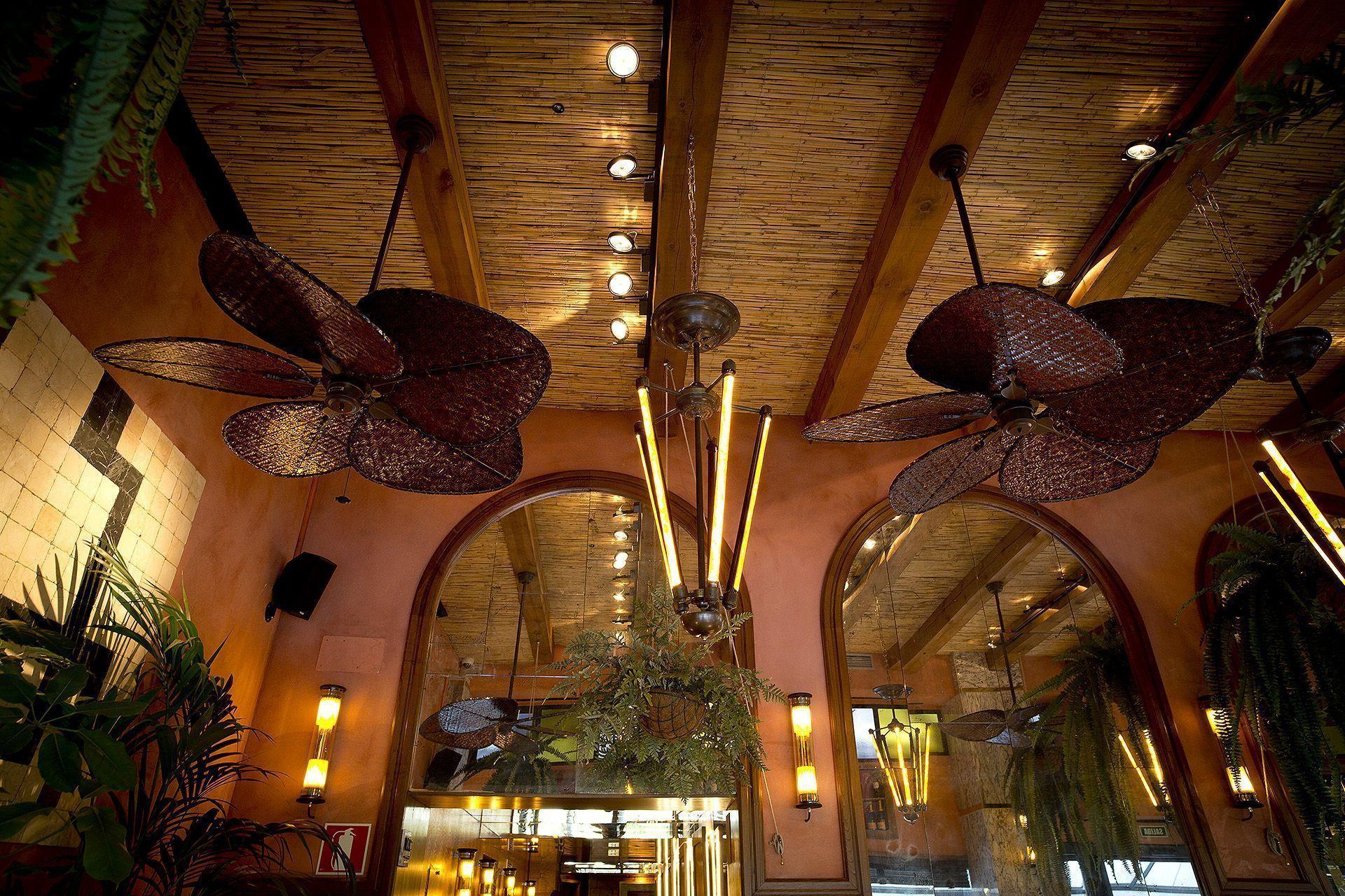 restaurante flores de alcachofa
